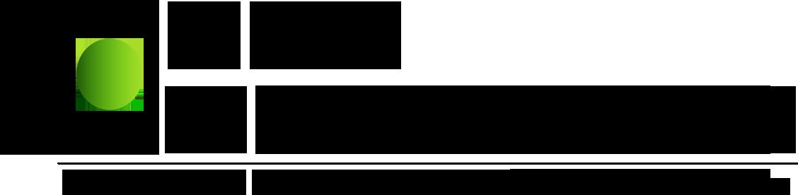 Logo-CSPSconsulting